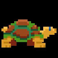 Tortuga1